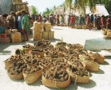 The islanders divide supplies amongst themselves, in the foreground are root vegetables in woven baskets